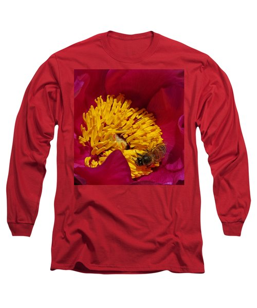 Bee On A Burgundy And Yellow Flower2 Long Sleeve T-Shirt by John Topman