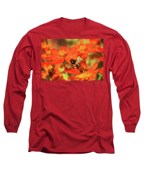 Bee On Flower Long Sleeve T-Shirt by Donna G Smith