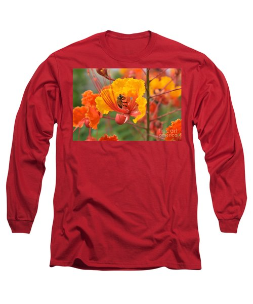 Bee Pollinating Bird Of Paradise Long Sleeve T-Shirt