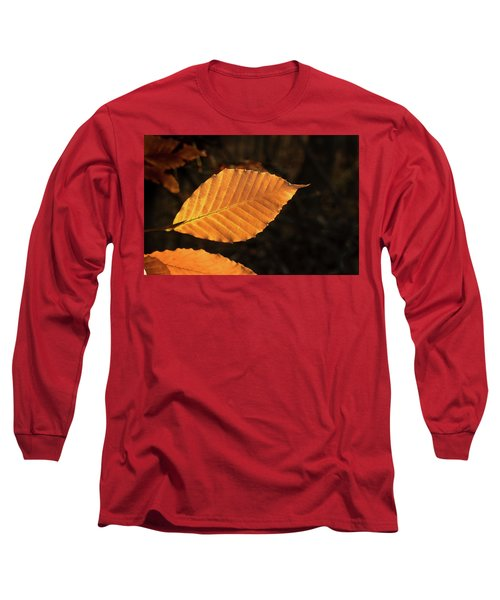 Beech Leaves In Afternoon Sun Long Sleeve T-Shirt