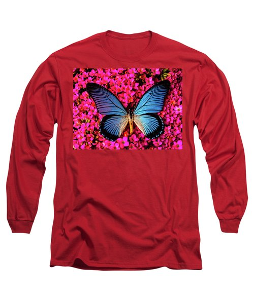 Big Blue Butterfly On Kalanchoe Flowers Long Sleeve T-Shirt