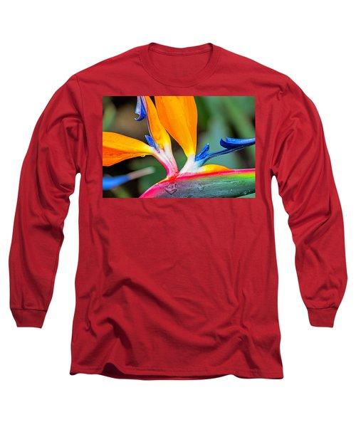 Bird Of Paradise After The Rain Long Sleeve T-Shirt