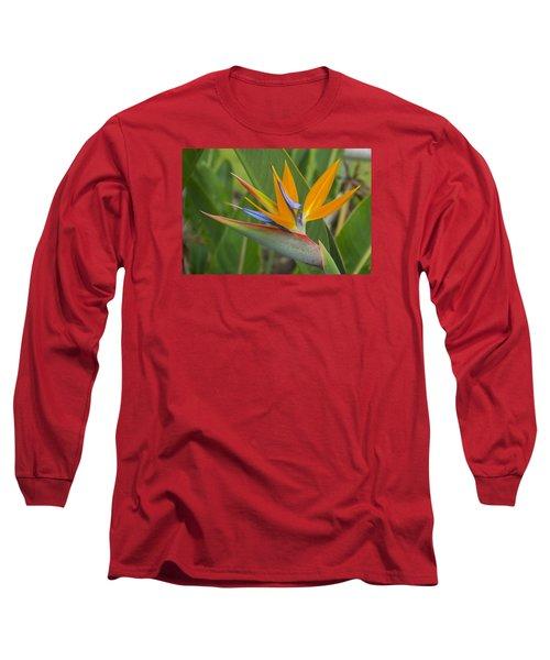 Long Sleeve T-Shirt featuring the photograph Bird Of Paradise by Christina Lihani