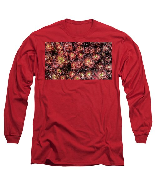 Black Roses Long Sleeve T-Shirt by Mark Barclay