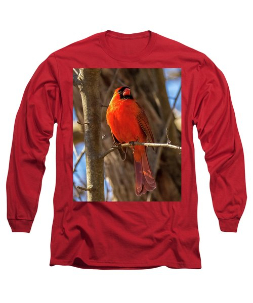 Bright Boy Long Sleeve T-Shirt