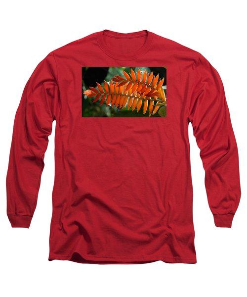 Brilliant Orange Nature Long Sleeve T-Shirt by Steve Archbold
