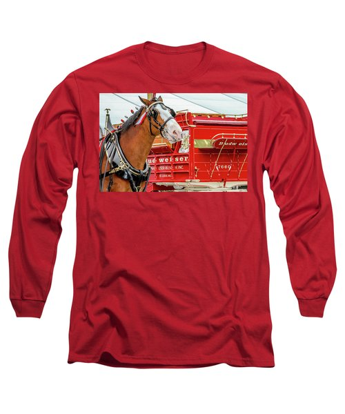 Budweiser Clydesdale In Full Dress Long Sleeve T-Shirt by Bill Gallagher