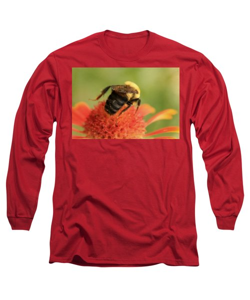 Long Sleeve T-Shirt featuring the photograph Bumblebee by Chris Berry