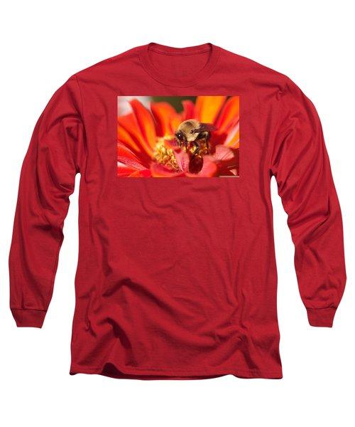 Busy Bee II Long Sleeve T-Shirt by Greg Graham