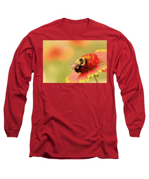 Long Sleeve T-Shirt featuring the photograph Busy Bumblebee by Chris Berry