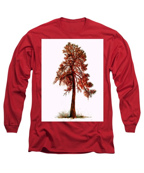 Long Sleeve T-Shirt featuring the drawing Chinese Pine Tree Drawing by Maja Sokolowska