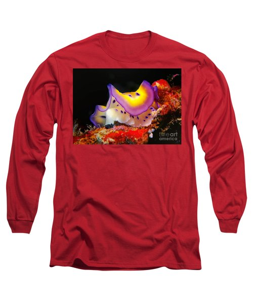 Chromodoris Kunei Nudibranch  Long Sleeve T-Shirt by Sergey Lukashin