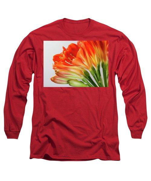 Clivia Miniata 2 Long Sleeve T-Shirt