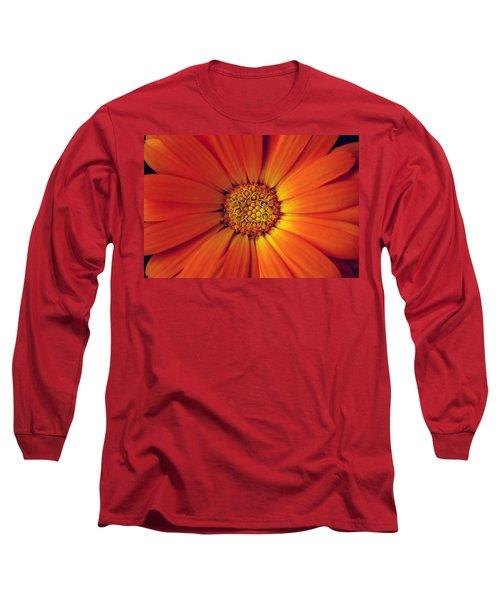 Close Up Of An Orange Daisy Long Sleeve T-Shirt
