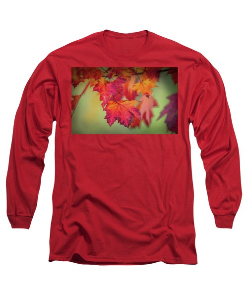 Close-up Of Red Maple Leaves In Autumn Long Sleeve T-Shirt