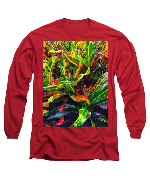 Colorful Crotons Long Sleeve T-Shirt by Kay Gilley