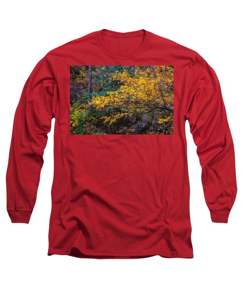Colorful Trees Along The Creek Bank Long Sleeve T-Shirt by John Brink