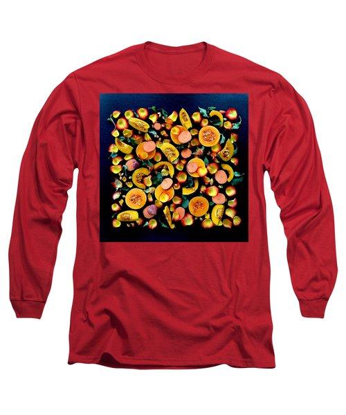 Colors Of Winter Squash Long Sleeve T-Shirt