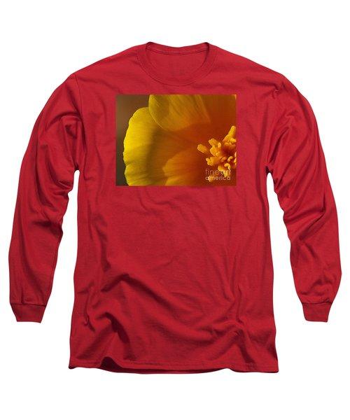 Copa De Oro - Subdued  Long Sleeve T-Shirt