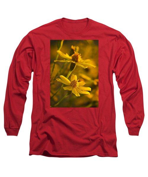 Coreopsis Verticillata 3 Long Sleeve T-Shirt
