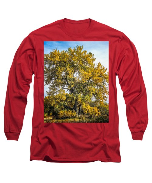 Cottonwood Tree # 12 In Fall Colors In Colorado Long Sleeve T-Shirt by John Brink