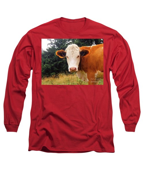 Long Sleeve T-Shirt featuring the photograph Cow In Pasture by MGL Meiklejohn Graphics Licensing