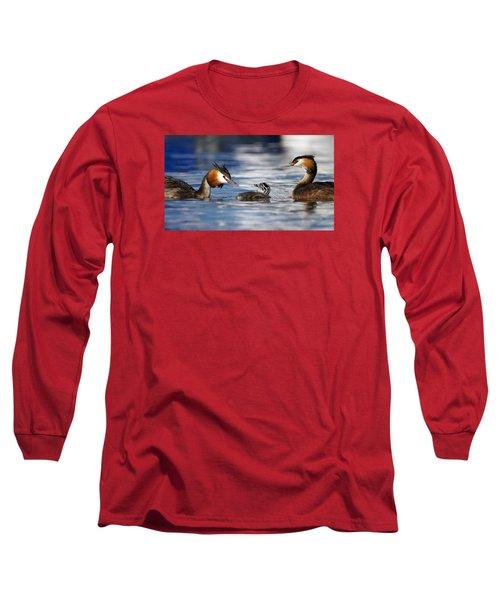 Crested Grebe, Podiceps Cristatus, Ducks Family Long Sleeve T-Shirt by Elenarts - Elena Duvernay photo