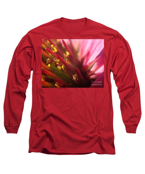 Curly Contrast Long Sleeve T-Shirt