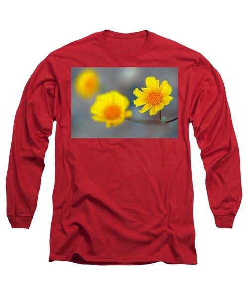 Death Valley Superbloom 204 Long Sleeve T-Shirt by Daniel Woodrum