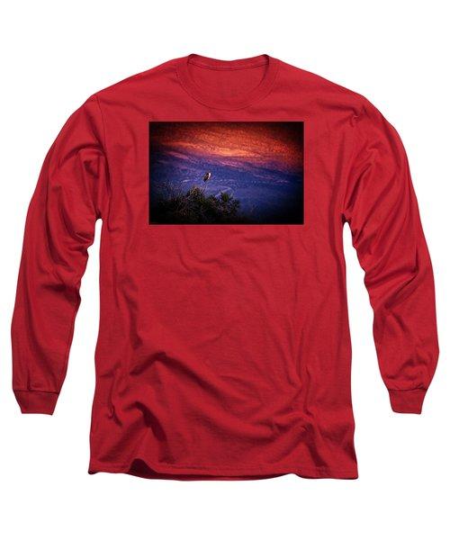 Dinnertime Long Sleeve T-Shirt by Rick Furmanek
