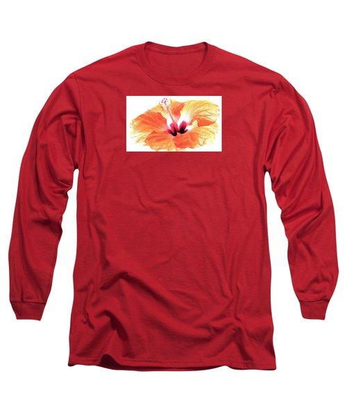 Enlightened Long Sleeve T-Shirt by Angela Davies