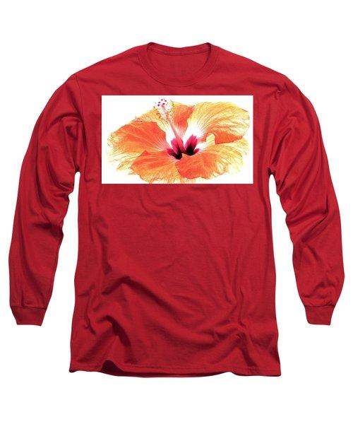 Enlightened Long Sleeve T-Shirt