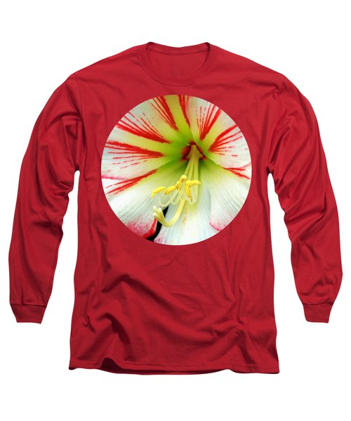 Fairy Tale Amaryllis Long Sleeve T-Shirt