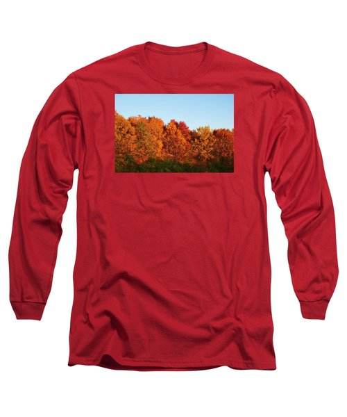 Long Sleeve T-Shirt featuring the photograph Fall Forest by Nikki McInnes