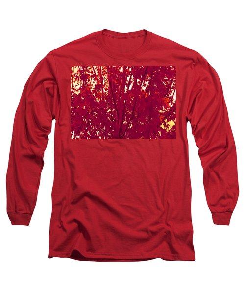 Fall Leaves #2 Long Sleeve T-Shirt