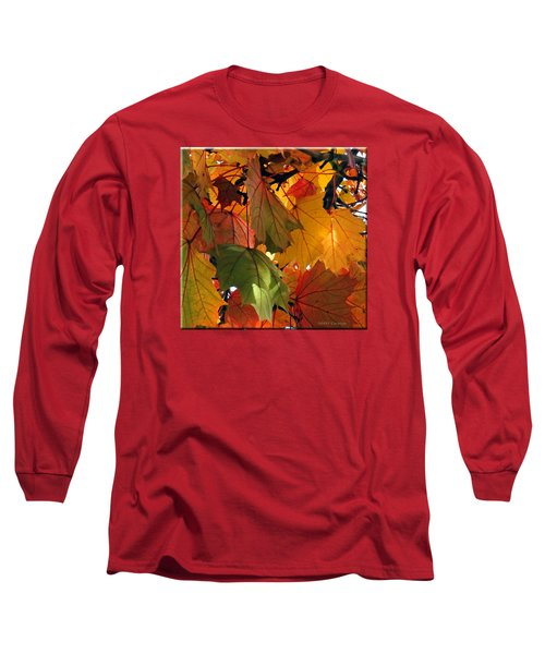 Fall Leaves Long Sleeve T-Shirt by Mikki Cucuzzo