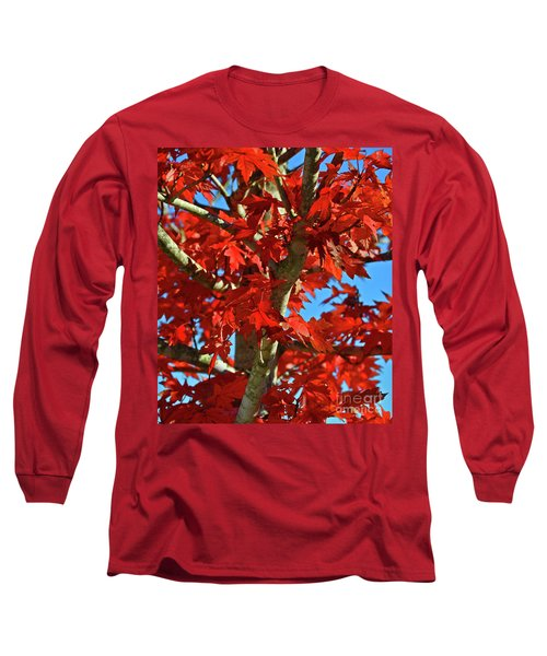 Fall Stars Long Sleeve T-Shirt