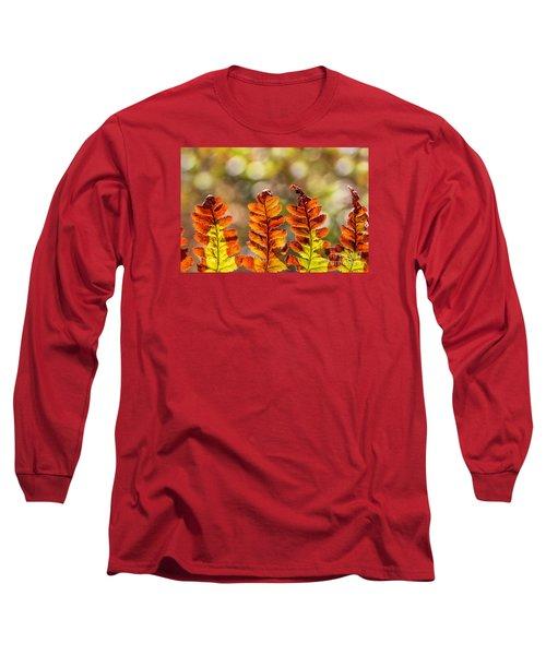 Ferns And Bokeh Forest Light Long Sleeve T-Shirt