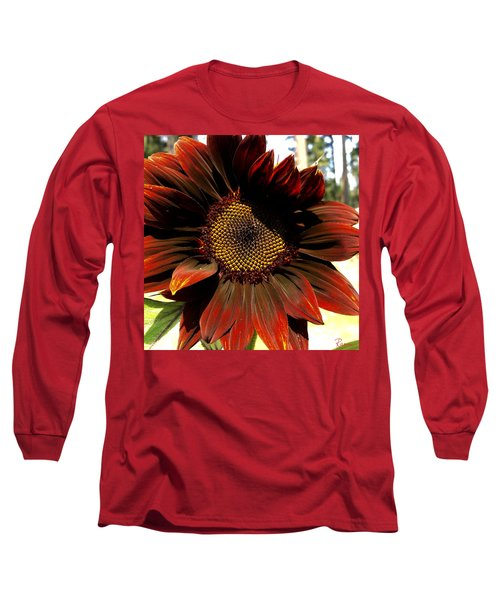 Fibonacci Hues Long Sleeve T-Shirt