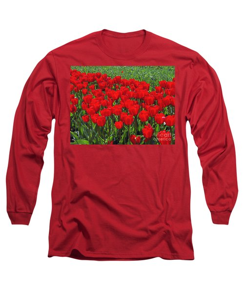 Field Of Red Tulips Long Sleeve T-Shirt