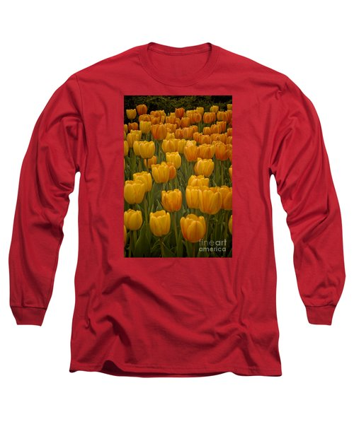Long Sleeve T-Shirt featuring the photograph Fine Lines In Yellow Tulips by Michael Flood