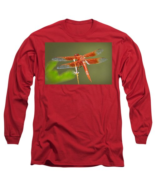 Long Sleeve T-Shirt featuring the photograph Flame Skimmer by AJ Schibig