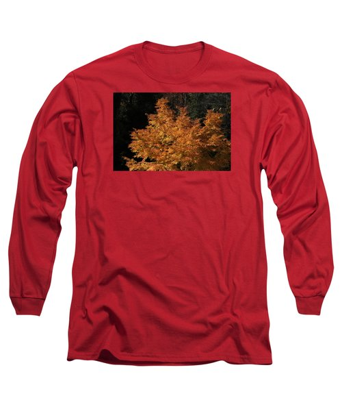 Flaming Tree Brush Long Sleeve T-Shirt by Deborah  Crew-Johnson