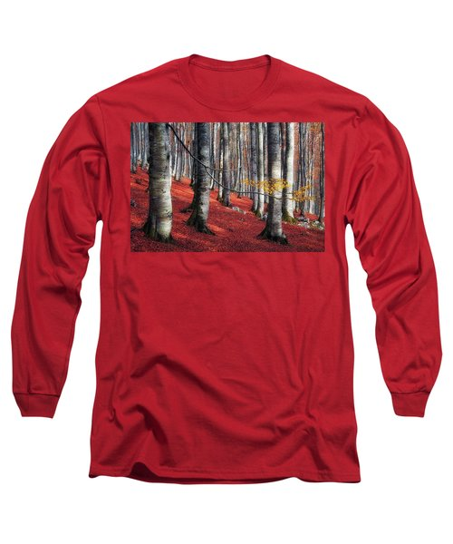 Fragility II Long Sleeve T-Shirt