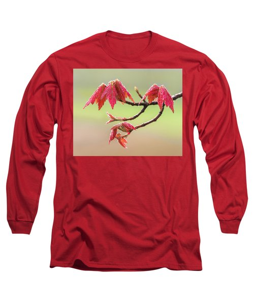 Frosty Maple Leaves Long Sleeve T-Shirt