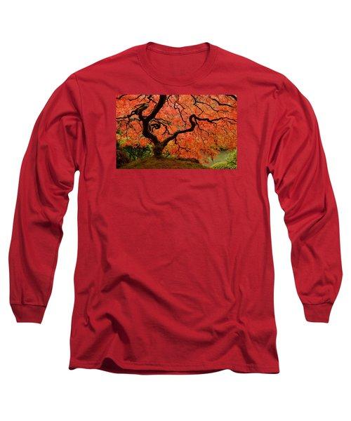 Fuego Long Sleeve T-Shirt by Don Schwartz
