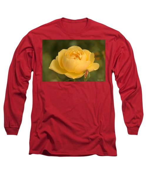 Golden Breath Long Sleeve T-Shirt by Amy Gallagher