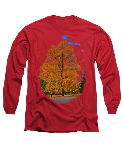 Golden Fall Colors 2 Long Sleeve T-Shirt
