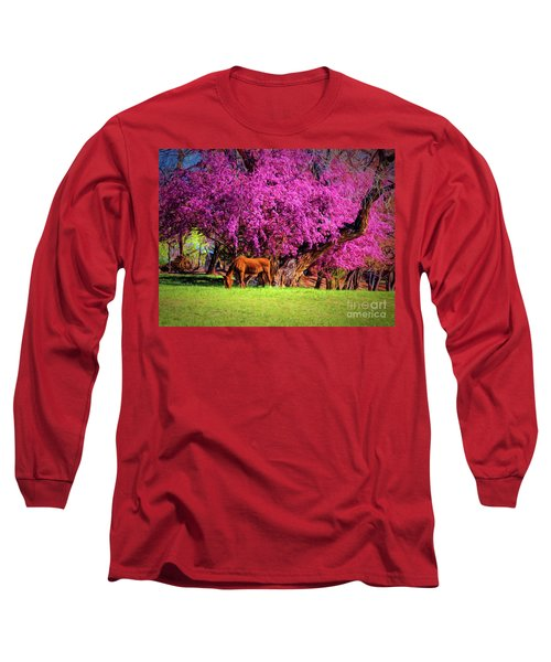 Grazing Horse  ... Long Sleeve T-Shirt