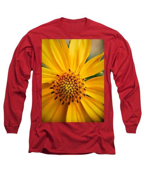Heart And Soul Long Sleeve T-Shirt